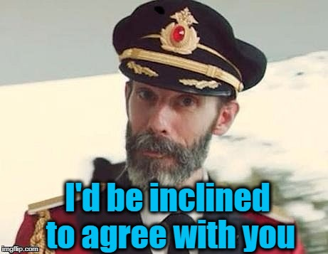 Captain Obvious | I'd be inclined to agree with you | image tagged in captain obvious | made w/ Imgflip meme maker