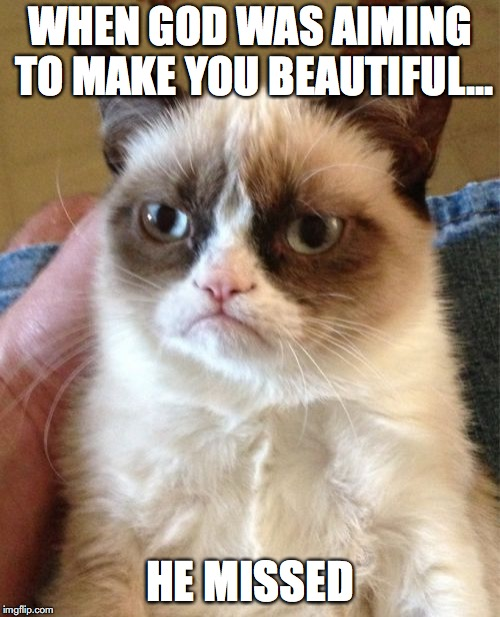 Grumpy Cat Meme | WHEN GOD WAS AIMING TO MAKE YOU BEAUTIFUL... HE MISSED | image tagged in memes,grumpy cat | made w/ Imgflip meme maker