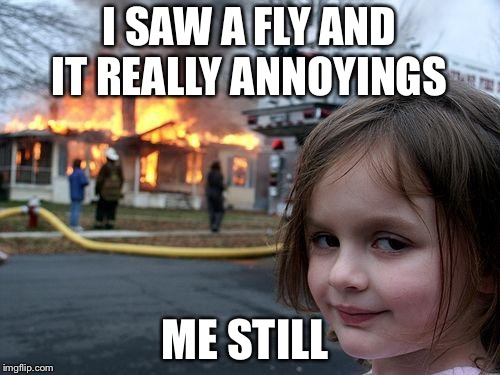 Disaster Girl Meme | I SAW A FLY AND IT REALLY ANNOYINGS ME STILL | image tagged in memes,disaster girl | made w/ Imgflip meme maker
