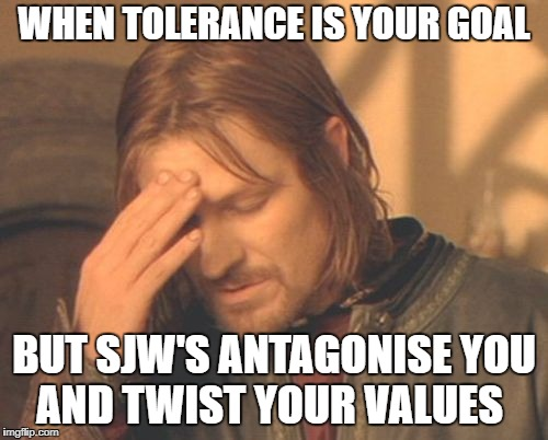 Tolerance | WHEN TOLERANCE IS YOUR GOAL BUT SJW'S ANTAGONISE YOU AND TWIST YOUR VALUES | image tagged in meme,tolerance,sjw,feminist,lgbt,pc | made w/ Imgflip meme maker