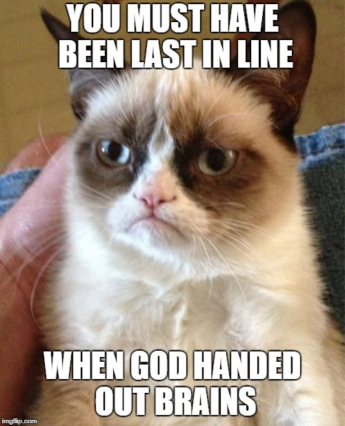 Grumpy Cat Meme | YOU MUST HAVE BEEN LAST IN LINE WHEN GOD HANDED OUT BRAINS | image tagged in memes,grumpy cat | made w/ Imgflip meme maker