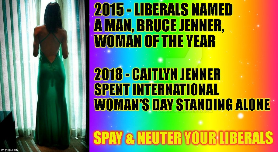 2015 - LIBERALS NAMED A MAN, BRUCE JENNER, WOMAN OF THE YEAR SPAY & NEUTER YOUR LIBERALS 2018 - CAITLYN JENNER SPENT INTERNATIONAL WOMAN'S D | made w/ Imgflip meme maker