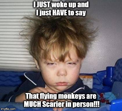 Scary Dreams and Revelations | I JUST woke up and I just HAVE to say That flying monkeys are MUCH Scarier in person!!! | image tagged in wake up,nightmare | made w/ Imgflip meme maker