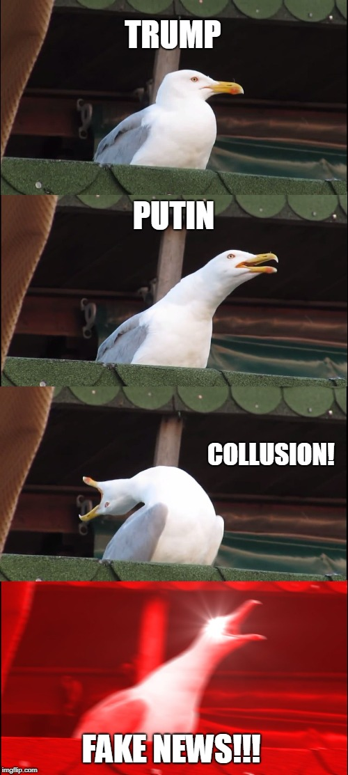 Russian Collusion Officially Fake News!  | TRUMP PUTIN COLLUSION! FAKE NEWS!!! | image tagged in memes,inhaling seagull,fake news,russian collusion,vladimir putin,donald trump | made w/ Imgflip meme maker