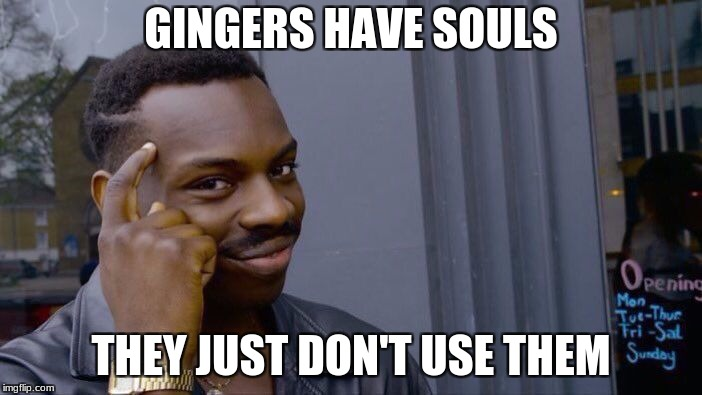 Roll Safe Think About It Meme | GINGERS HAVE SOULS THEY JUST DON'T USE THEM | image tagged in memes,roll safe think about it | made w/ Imgflip meme maker