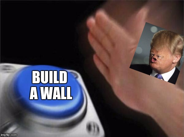 Blank Nut Button Meme | BUILD A WALL | image tagged in memes,blank nut button | made w/ Imgflip meme maker