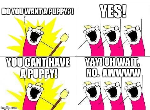 What Do We Want Meme | DO YOU WANT A PUPPY?! YES! YOU CANT HAVE A PUPPY! YAY! OH WAIT, NO.  AWWWW | image tagged in memes,what do we want | made w/ Imgflip meme maker