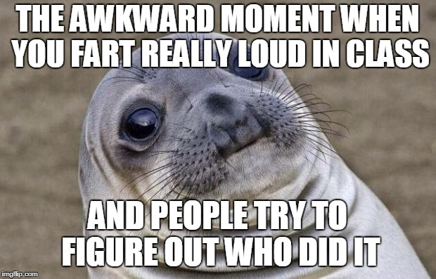 Awkward Moment Sealion Meme | THE AWKWARD MOMENT WHEN YOU FART REALLY LOUD IN CLASS AND PEOPLE TRY TO FIGURE OUT WHO DID IT | image tagged in memes,awkward moment sealion | made w/ Imgflip meme maker