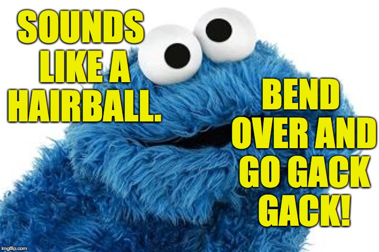 SOUNDS LIKE A HAIRBALL. BEND OVER AND GO GACK GACK! | made w/ Imgflip meme maker