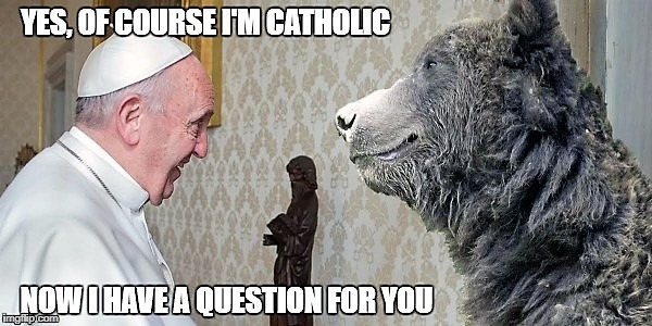 Pope has question | image tagged in pope | made w/ Imgflip meme maker