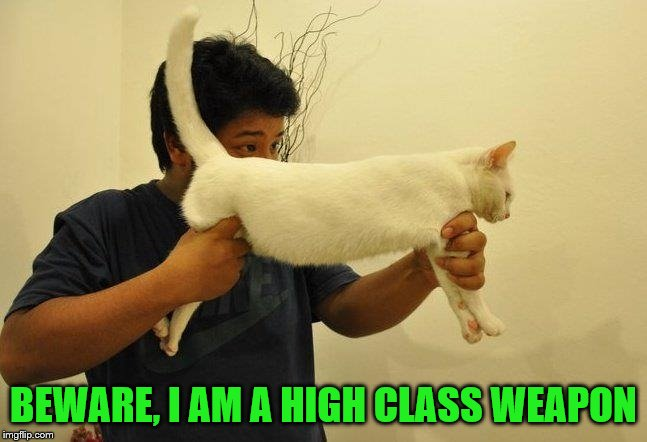 BEWARE, I AM A HIGH CLASS WEAPON | made w/ Imgflip meme maker