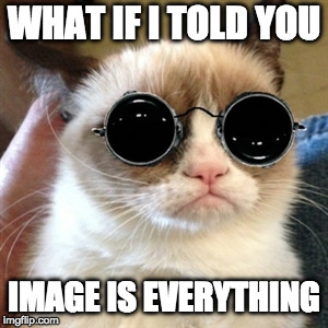 reality check | WHAT IF I TOLD YOU IMAGE IS EVERYTHING | image tagged in grumpy cat | made w/ Imgflip meme maker