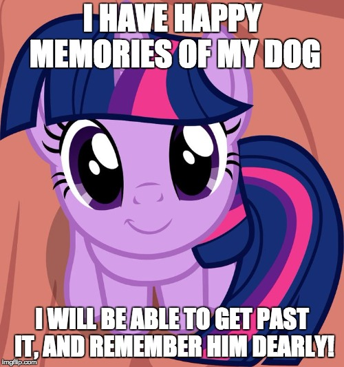 I'm starting to already! | I HAVE HAPPY MEMORIES OF MY DOG I WILL BE ABLE TO GET PAST IT, AND REMEMBER HIM DEARLY! | image tagged in twilight is interested,memes,dog,memories | made w/ Imgflip meme maker