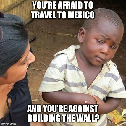 Third World Skeptical Kid Meme | YOU'RE AFRAID TO TRAVEL TO MEXICO AND YOU'RE AGAINST BUILDING THE WALL? | image tagged in memes,third world skeptical kid | made w/ Imgflip meme maker