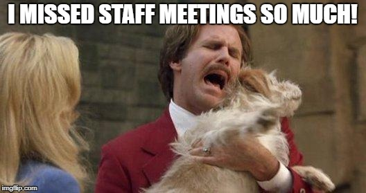 Anchorman Ron Burgundy and Baxter | I MISSED STAFF MEETINGS SO MUCH! | image tagged in anchorman ron burgundy and baxter | made w/ Imgflip meme maker