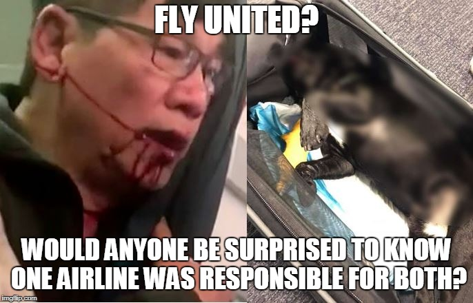 united airlines does it again |  FLY UNITED? WOULD ANYONE BE SURPRISED TO KNOW ONE AIRLINE WAS RESPONSIBLE FOR BOTH? | image tagged in united airlines,dead puppy,news | made w/ Imgflip meme maker