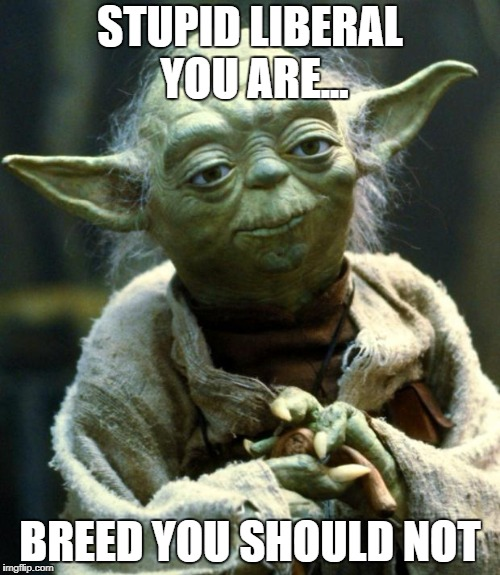 Star Wars Yoda Meme | STUPID LIBERAL YOU ARE... BREED YOU SHOULD NOT | image tagged in memes,star wars yoda,stupid liberals,words that offend liberals,liberalism is a mental disorder,disappointed yoda | made w/ Imgflip meme maker