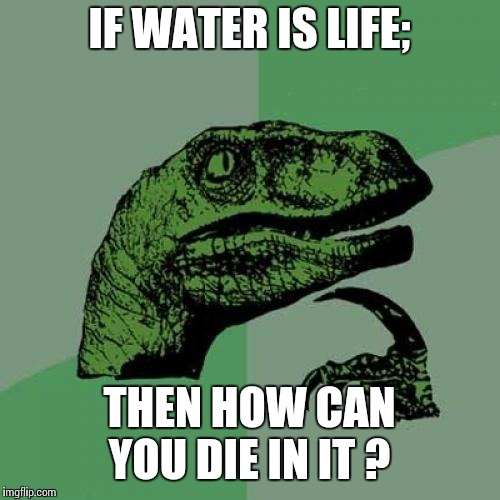 Water is a mystery | IF WATER IS LIFE; THEN HOW CAN YOU DIE IN IT ? | image tagged in memes,philosoraptor | made w/ Imgflip meme maker