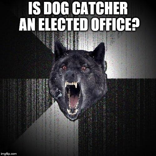 Insanity Wolf Meme | IS DOG CATCHER AN ELECTED OFFICE? | image tagged in memes,insanity wolf | made w/ Imgflip meme maker