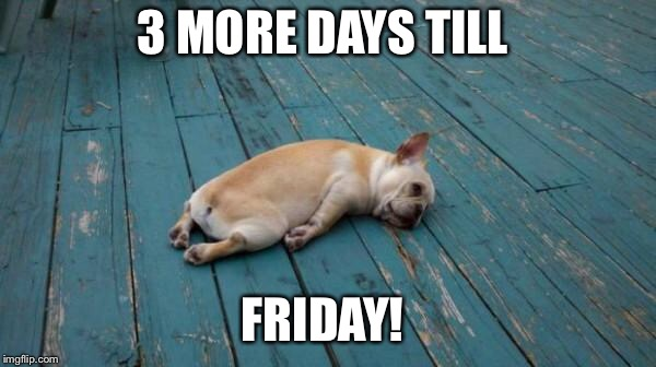 tired dog | 3 MORE DAYS TILL FRIDAY! | image tagged in tired dog | made w/ Imgflip meme maker