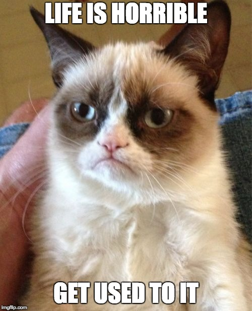 Grumpy Cat - Life is Horrible | LIFE IS HORRIBLE GET USED TO IT | image tagged in memes,grumpy cat | made w/ Imgflip meme maker