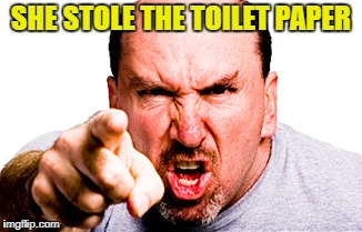 SHE STOLE THE TOILET PAPER | made w/ Imgflip meme maker