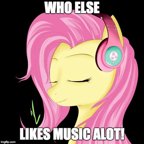 I want to make a career out of it! | WHO ELSE LIKES MUSIC ALOT! | image tagged in memes,fluttershy,music | made w/ Imgflip meme maker