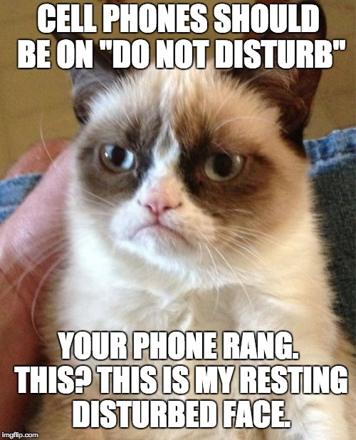 "Grumpy Cat | CELL PHONES SHOULD BE ON ""DO NOT DISTURB"" YOUR PHONE RANG. THIS? THIS IS MY RESTING DISTURBED FACE. 