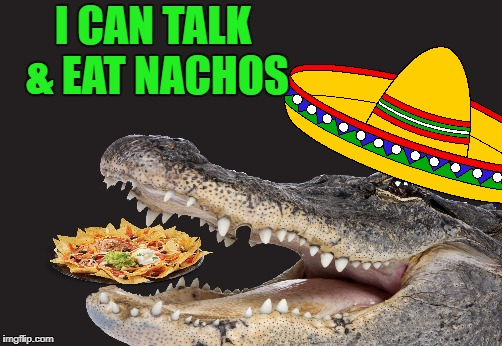 I CAN TALK & EAT NACHOS | made w/ Imgflip meme maker