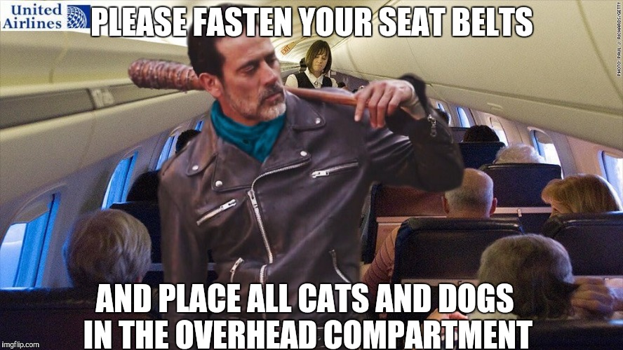 PLEASE FASTEN YOUR SEAT BELTS AND PLACE ALL CATS AND DOGS IN THE OVERHEAD COMPARTMENT | image tagged in negan united | made w/ Imgflip meme maker