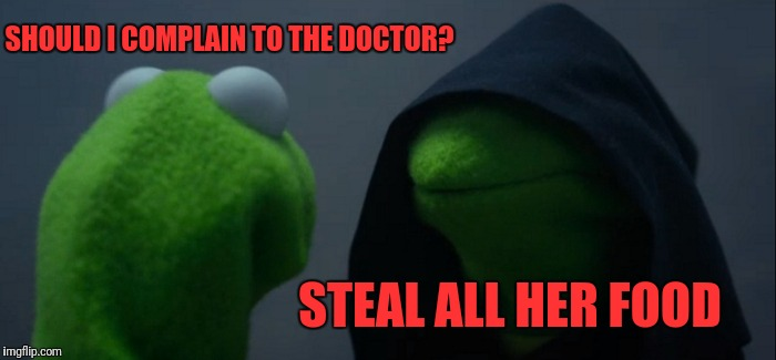 Evil Kermit Meme | SHOULD I COMPLAIN TO THE DOCTOR? STEAL ALL HER FOOD | image tagged in memes,evil kermit | made w/ Imgflip meme maker