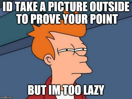Futurama Fry Meme | ID TAKE A PICTURE OUTSIDE TO PROVE YOUR POINT BUT IM TOO LAZY | image tagged in memes,futurama fry | made w/ Imgflip meme maker