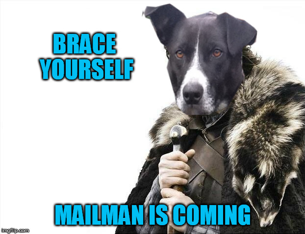 Brace Yourselves X is Coming Meme | BRACE YOURSELF MAILMAN IS COMING | image tagged in memes,brace yourselves x is coming | made w/ Imgflip meme maker