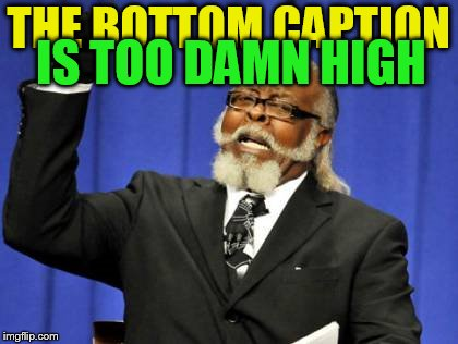 Too Damn High Meme | THE BOTTOM CAPTION IS TOO DAMN HIGH | image tagged in memes,too damn high,caption,bottom caption,it came from the comments | made w/ Imgflip meme maker