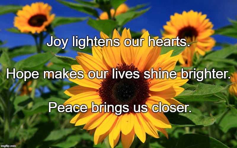 Happy Sunflower | Joy lightens our hearts. Peace brings us closer. Hope makes our lives shine brighter. | image tagged in happy sunflower | made w/ Imgflip meme maker