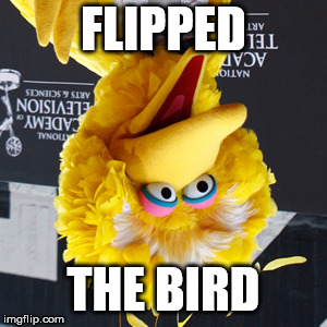 Use Your Img Nation |  FLIPPED; THE BIRD | image tagged in memes,big bird,flipped | made w/ Imgflip meme maker