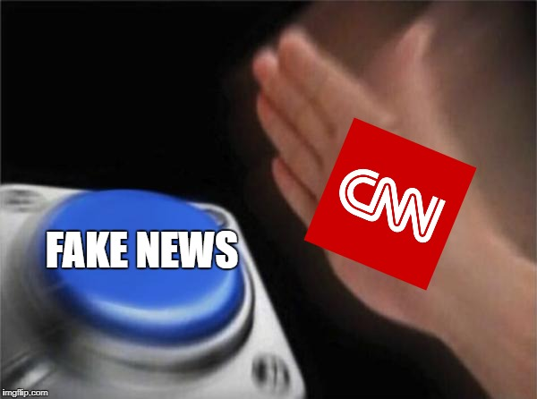 Blank Nut Button Meme | FAKE NEWS | image tagged in memes,blank nut button | made w/ Imgflip meme maker
