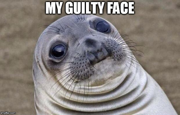 Awkward Moment Sealion Meme | MY GUILTY FACE | image tagged in memes,awkward moment sealion | made w/ Imgflip meme maker