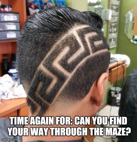 Wow. You could get really lost in there. |  TIME AGAIN FOR: CAN YOU FIND YOUR WAY THROUGH THE MAZE? | image tagged in memes,hair | made w/ Imgflip meme maker