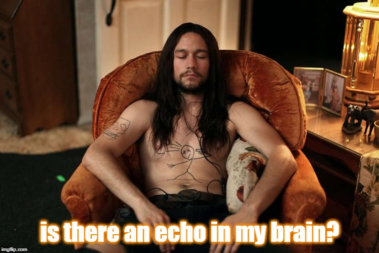 is there an echo in my brain? | made w/ Imgflip meme maker