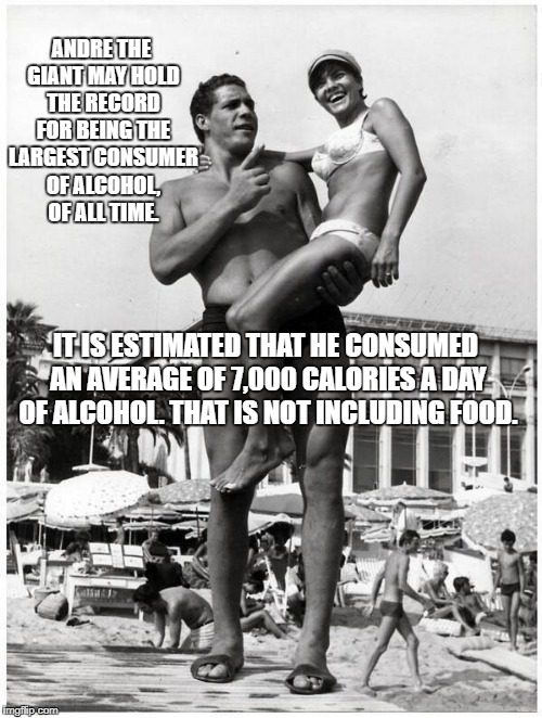Andre The Giant... Biggest Drinker In The World.. Figuratively And Literally.. #TrueStory #ATGfacts | ANDRE THE GIANT MAY HOLD THE RECORD FOR BEING THE LARGEST CONSUMER OF ALCOHOL, OF ALL TIME. IT IS ESTIMATED THAT HE CONSUMED AN AVERAGE OF 7 | image tagged in biggest drinker ever,drunkard,andre the giant,wrestling,7000 calories,7 foot 4 inches | made w/ Imgflip meme maker