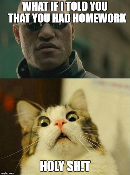 plot twist | WHAT IF I TOLD YOU  THAT YOU HAD HOMEWORK HOLY SH!T | image tagged in scared cat,matrix morpheus,funny memes,plot twist | made w/ Imgflip meme maker