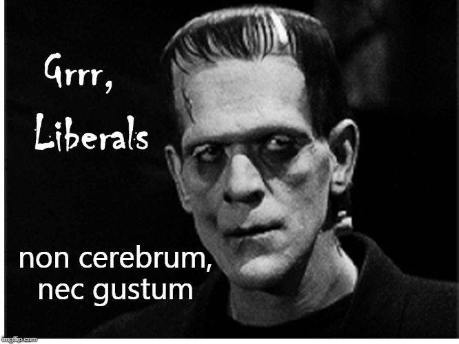 Frankenstein & Liberals | non cerebrum, nec gustum | image tagged in frankenstein,liberals | made w/ Imgflip meme maker