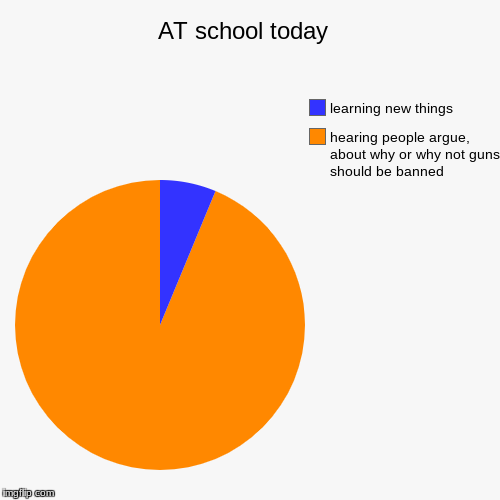 AT school today  | hearing people argue, about why or why not guns should be banned , learning new things | image tagged in funny,pie charts | made w/ Imgflip pie chart maker