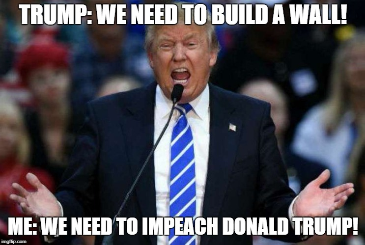 Donald Trump | TRUMP: WE NEED TO BUILD A WALL! ME: WE NEED TO IMPEACH DONALD TRUMP! | image tagged in donald trump | made w/ Imgflip meme maker