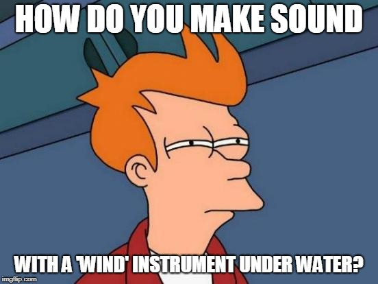 Futurama Fry Meme | HOW DO YOU MAKE SOUND WITH A 'WIND' INSTRUMENT UNDER WATER? | image tagged in memes,futurama fry | made w/ Imgflip meme maker