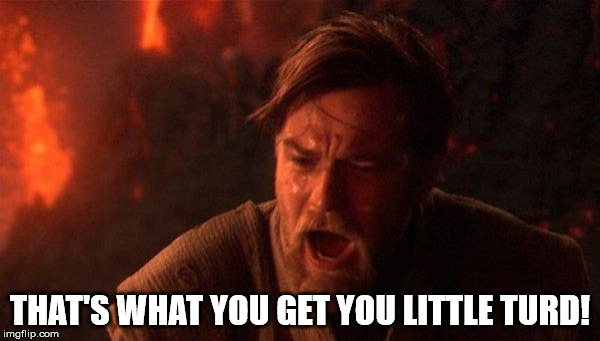 You Were The Chosen One (Star Wars) |  THAT'S WHAT YOU GET YOU LITTLE TURD! | image tagged in memes,you were the chosen one star wars | made w/ Imgflip meme maker