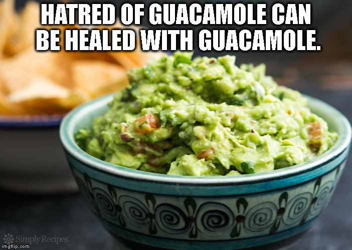 Hate Guacamole? | HATRED OF GUACAMOLE CAN BE HEALED WITH GUACAMOLE. | image tagged in guacamole | made w/ Imgflip meme maker