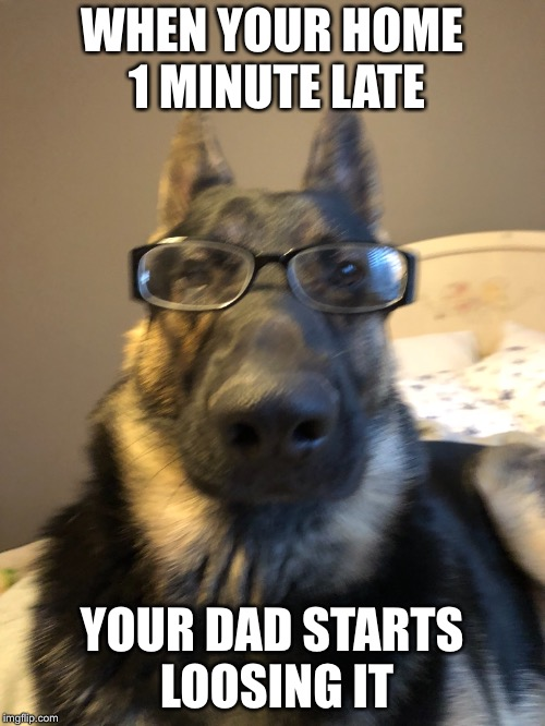Concerned dad doge | WHEN YOUR HOME 1 MINUTE LATE YOUR DAD STARTS LOOSING IT | image tagged in doge,concerned,dad | made w/ Imgflip meme maker