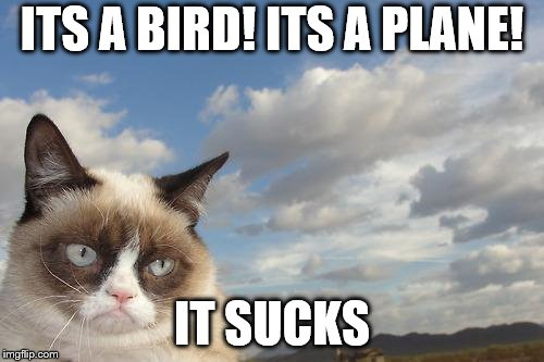 Grumpy Cat Sky | ITS A BIRD! ITS A PLANE! IT SUCKS | image tagged in memes,grumpy cat sky,grumpy cat | made w/ Imgflip meme maker